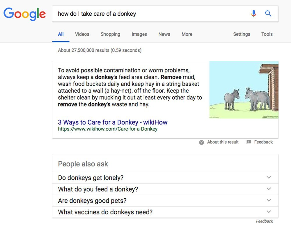 google results for take care of donkey